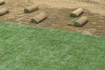 A new sod installation can make your lawn look brand new!