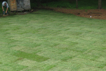Every sod installation we do is designed to meet the specific needs of your soil.
