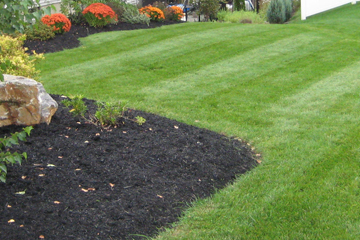 Green Boys Landscapes weekly lawn mowing, mulch installation, and perennial plantings.